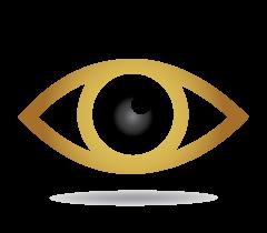 Vir2ue vision